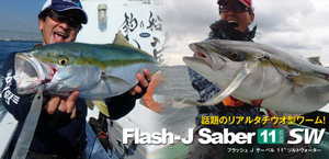 027_flash_j_saber_5620x300