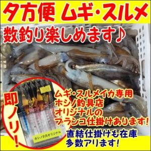 Image_kounaijyouhou_mugiikasurume