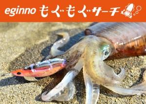 P603_tokutyou_01